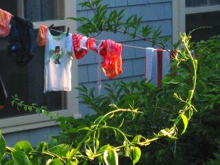 IMG_0170_aa_320.jpg laundry